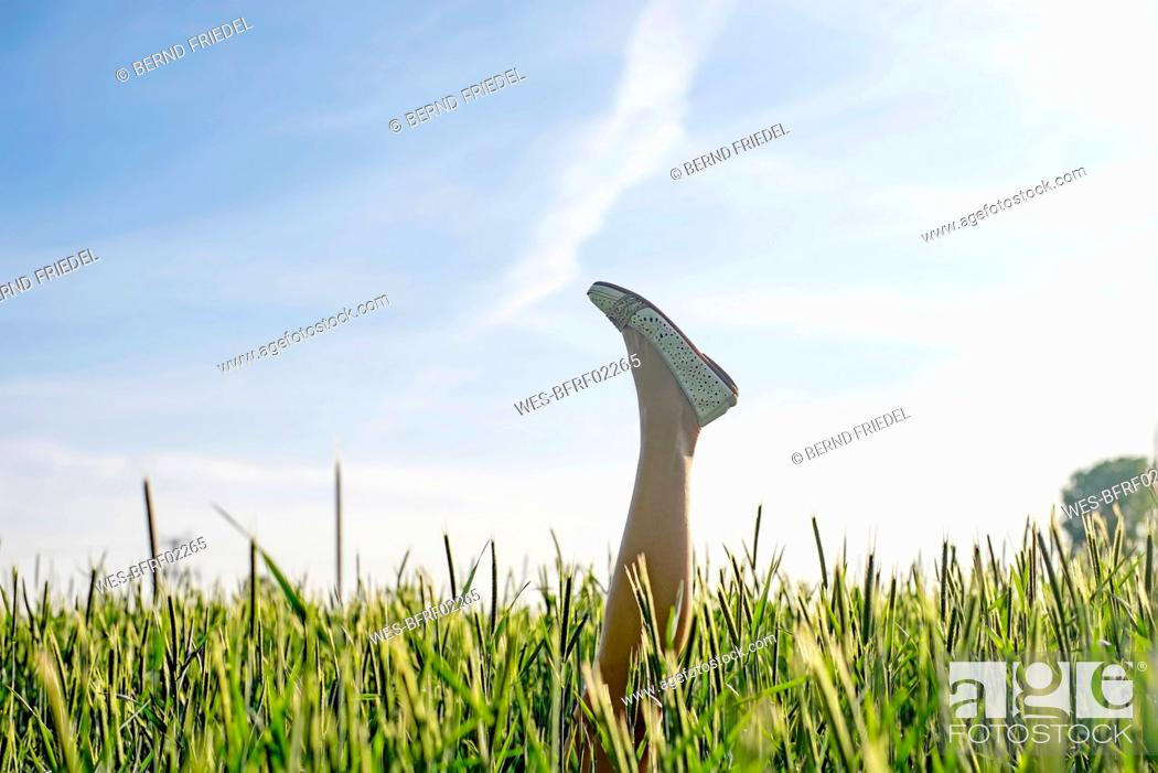 Photo de stock: Woman wearing shoe with foot up amidst plants against sky.