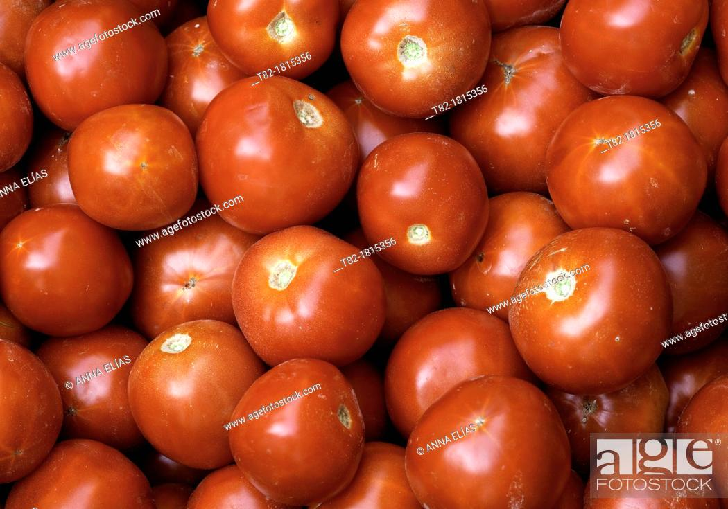 Stock Photo: red tomatoes Solanum lycopersicum many forming a pattern, Andévalo, Sierra de Aracena, Huelva, Andalucía, Spain, Europe.