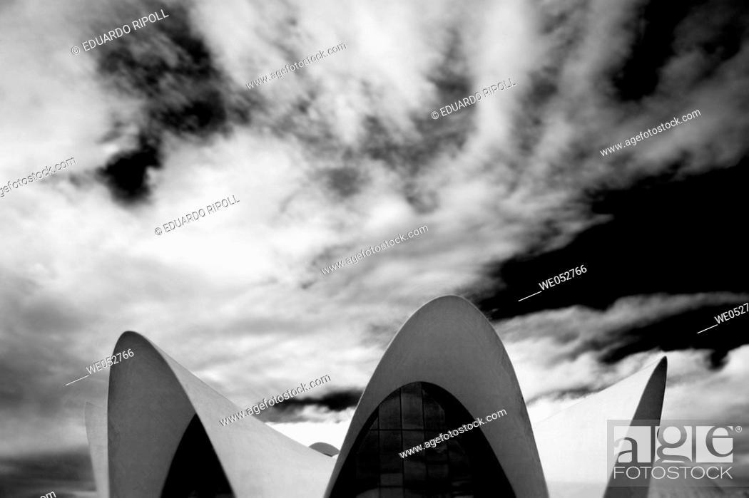 Stock Photo: Oceonografic (architect Felix Candela). Ciudad de las Artes y las Ciencias. Valencia. Comunidad Valenciana. Spain.