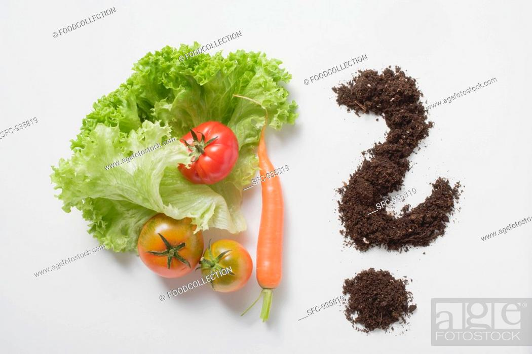 Stock Photo: Lettuce leaves, tomatoes, carrot & soil forming question mark.