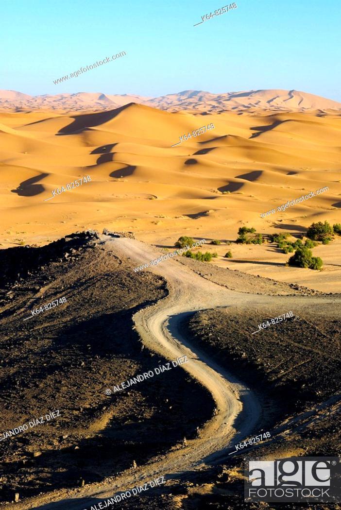 Stock Photo: Desert dunes in Morocco, Africa.