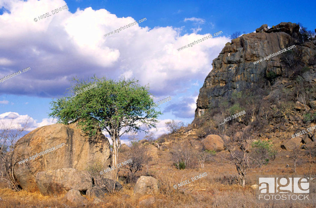 Stock Photo: Kruger National Park Scene. Kopje near Orpen. Kruger National Park, South Africa.