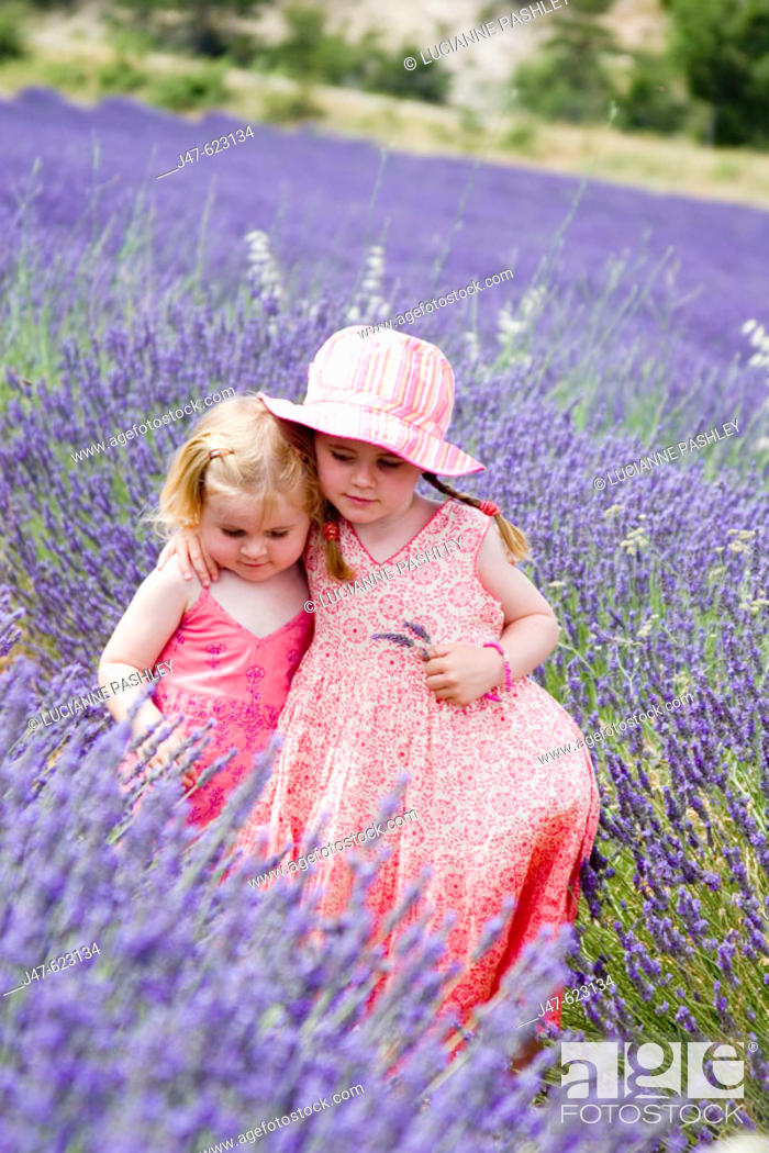 Stock Photo: 3 and 5 year old sisters standing together in a field ful of lavender, with their arms round each other.