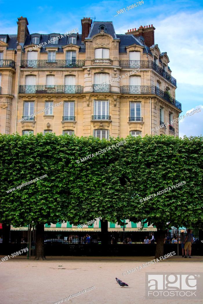 Imagen: Haussmannian building facade in front of the Square Jean XXIII, in a sunny day. île de la Cité, Paris, France.