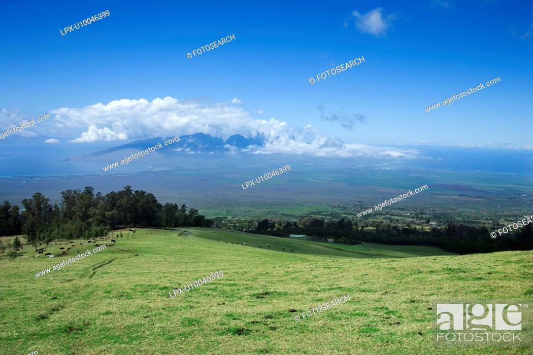 Stock Photo: Landscape of Poli-Poli, Upcountry Maui, Hawaii, USA.