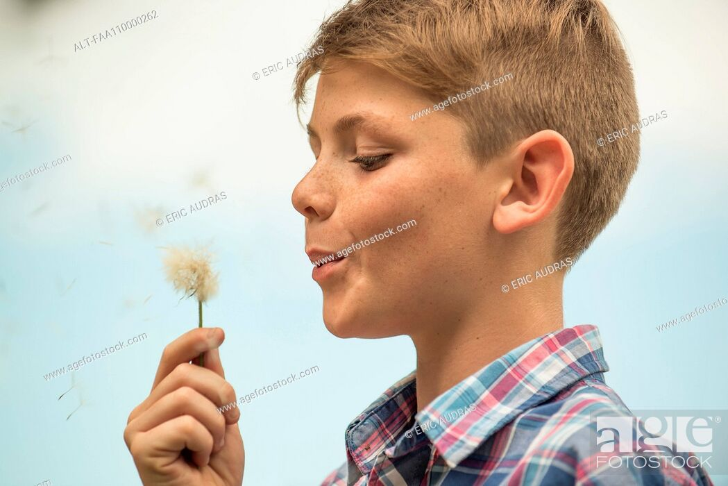Stock Photo: Boy blowing dandelion seedhead.