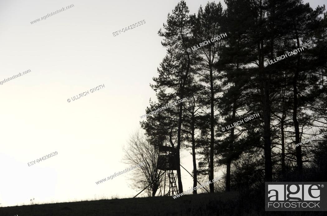 Imagen: Hunting seat on the edge of the forest by twilight.