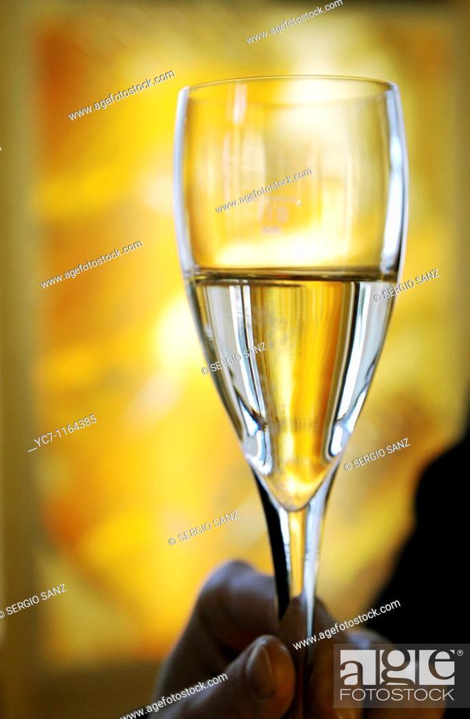 Stock Photo: champagne tasting.