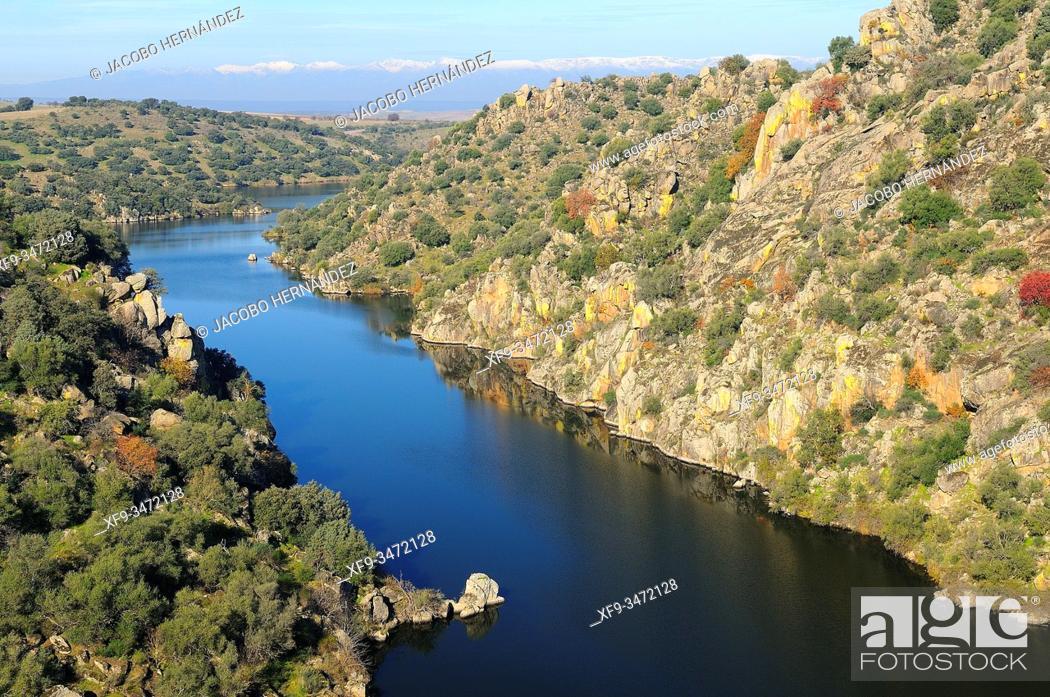 Stock Photo: Tajo river. Azután. Toledo province. Castilla-La Mancha. Spain.