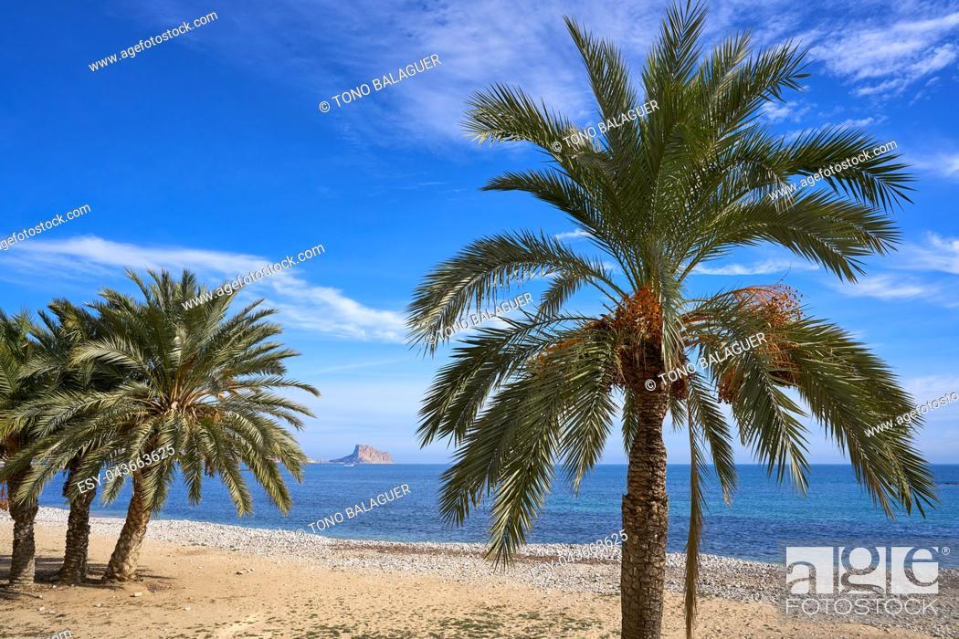Stock Photo: Altea beach Playa La Roda palm trees in Alicante of Spain.