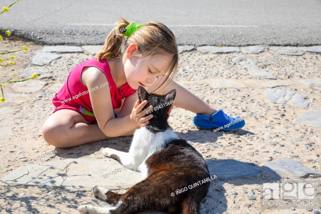 Stock Photo: little girl, five years old child sitting on the ground, holding head and looking at white and black cat, on the street in Summertime.