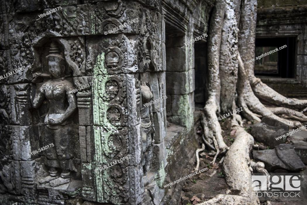 Stock Photo: Ta Prohm temple in Angkor Wat, Siem Reap, Cambodia.