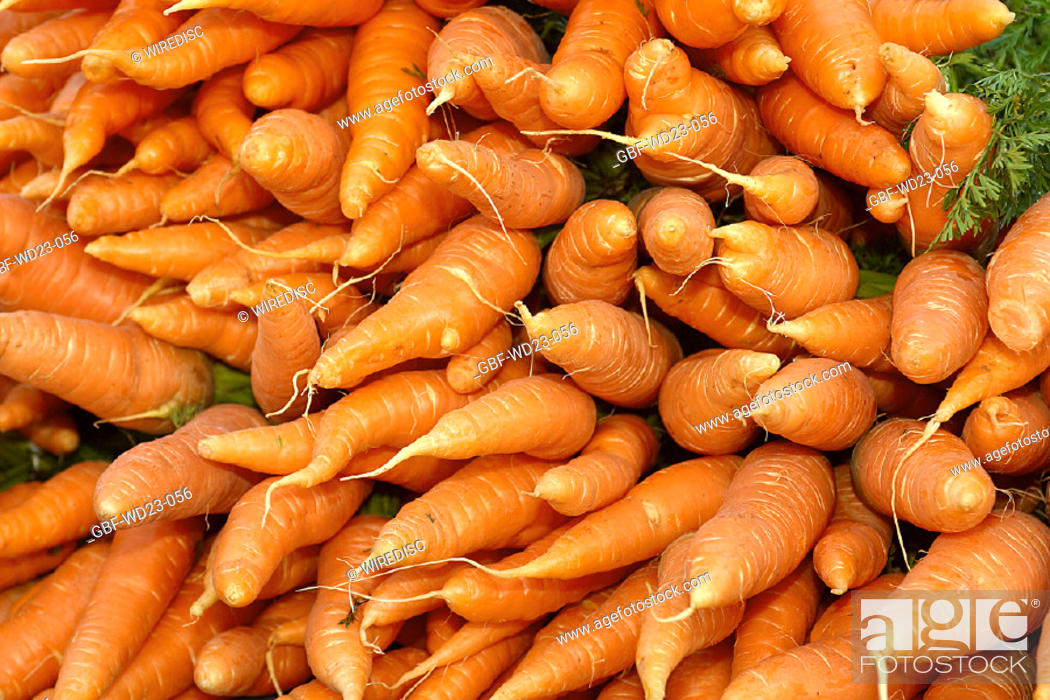 Stock Photo: Carrot, market, agriculture, Brazil.