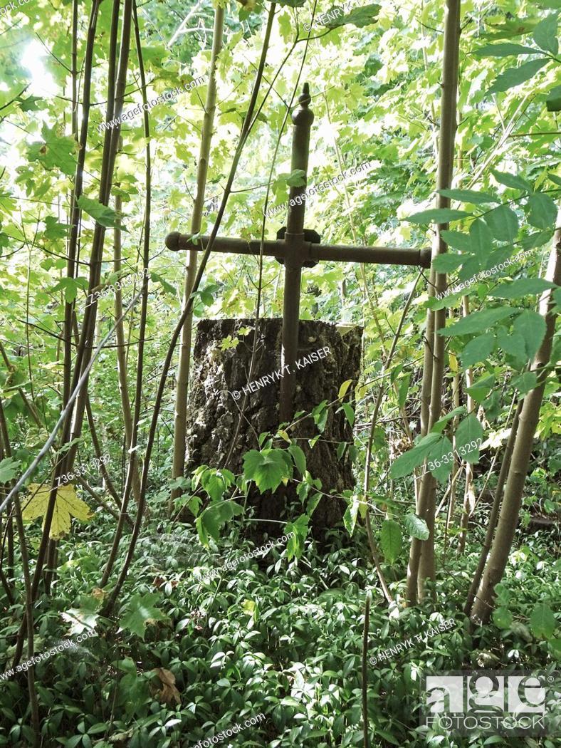 Stock Photo: Abandoned Polish Cemetery in Boryslav, Ukraine, Europe.