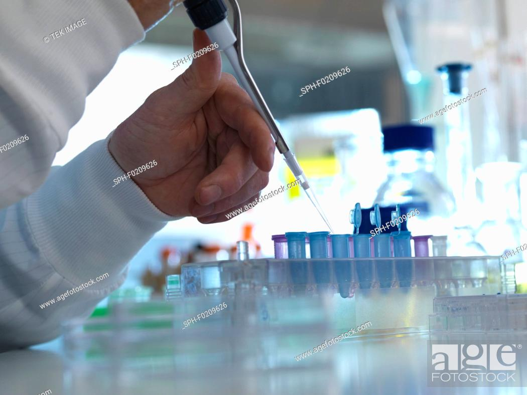Stock Photo: Biochemical research.