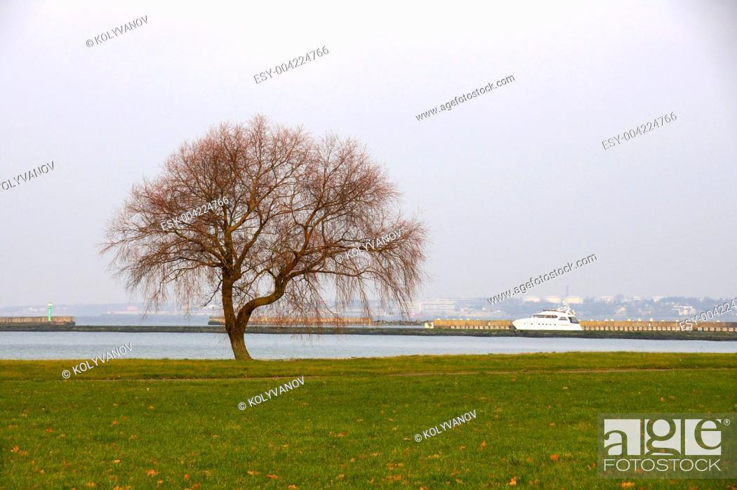 Stock Photo: Landscape.