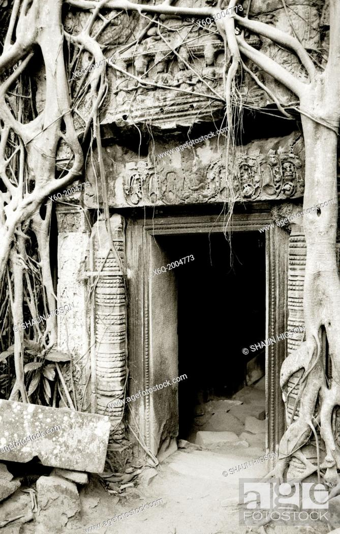 Imagen: Doorway in Ta Prohm. The Temples of Angkor in Siem Reap in Cambodia in Southeast Asia Far East.