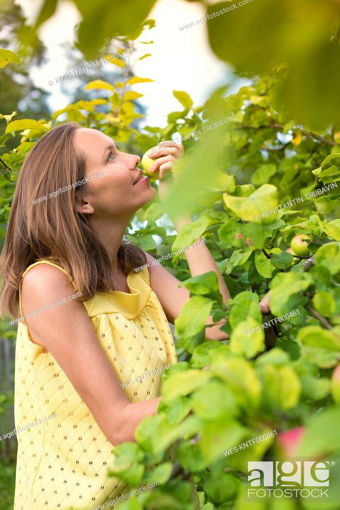 Stock Photo: Woman smelling apple in the garden.