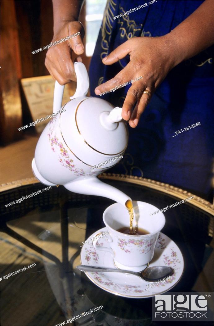 Stock Photo: Cup of local tea served, Kandy, Sri Lanka.