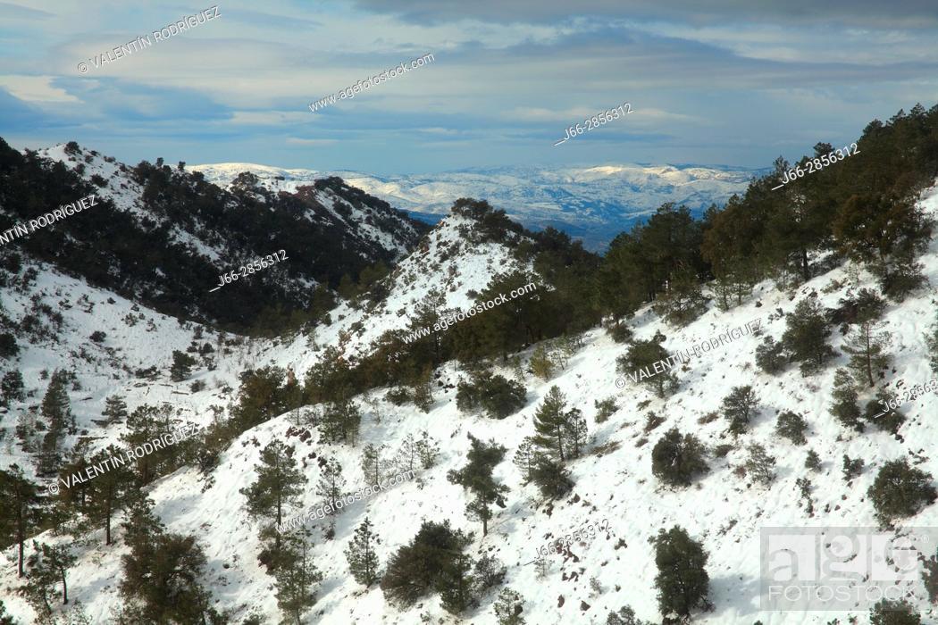 Imagen: Winter landscape under the Espadán peak. Natural park Sierra Espadán. Castellón.