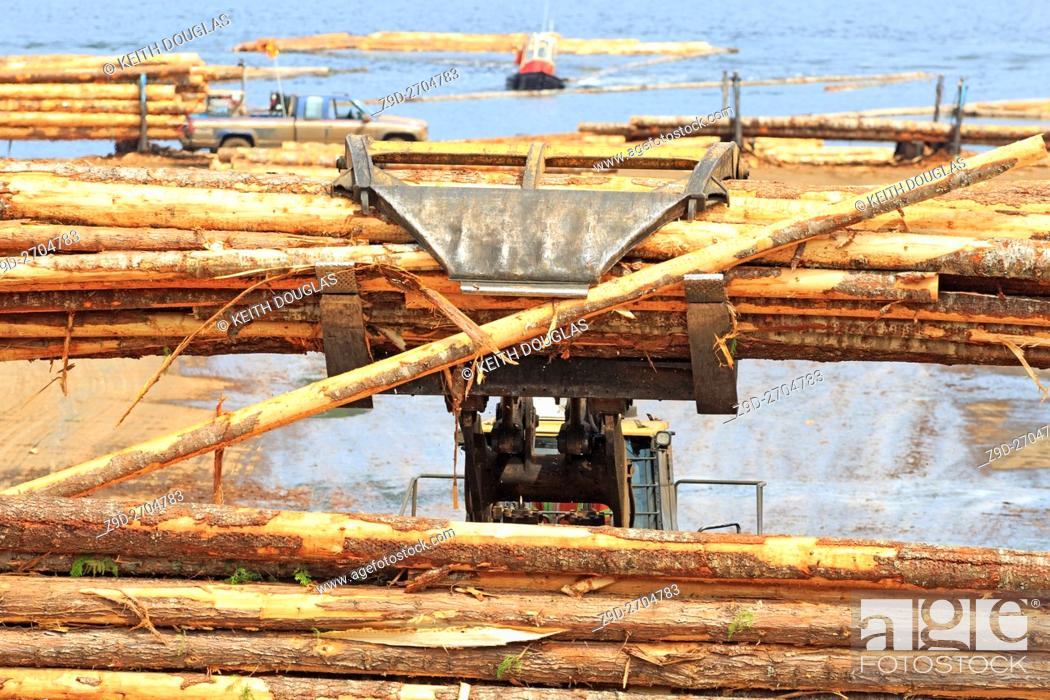 Stock Photo: Loader unoading logging truck at sawmill, Ladysmith, Vancouver Island, British Columbia.