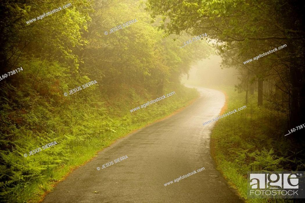 Stock Photo: Country road, Finisterre. La Coruña province, Galicia, Spain.