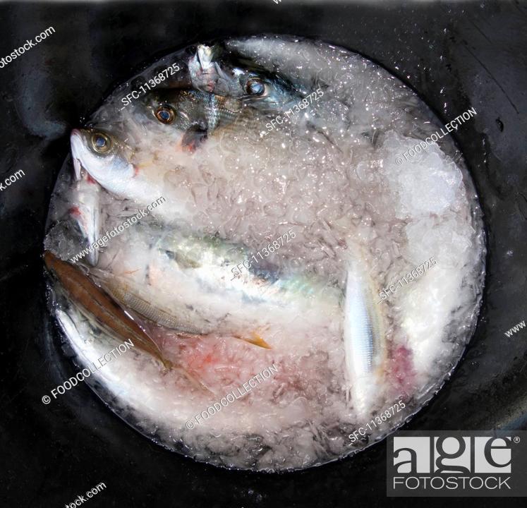 Stock Photo: Fresh fish on ice.