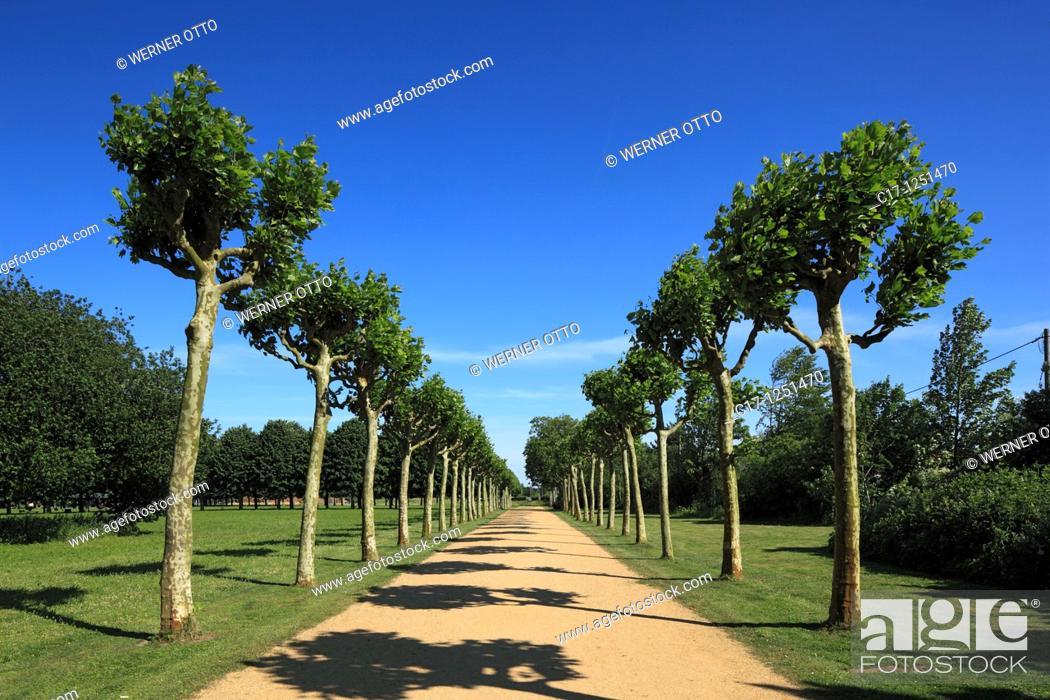 Stock Photo: Germany, Xanten, Rhine, Lower Rhine, North Rhine-Westphalia, NRW, LVR, Archaeological Park Xanten, APX, open-air museum, Roman park, Roman Empire.
