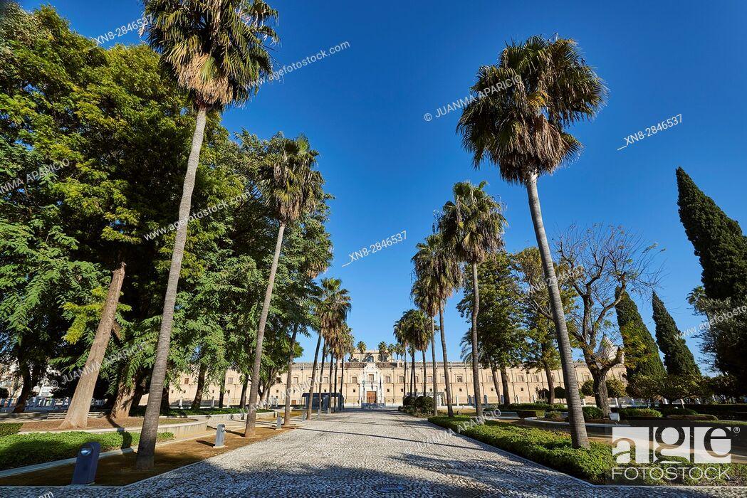 Stock Photo: Parlamento de Andalucia (Andalusian Parliament) (Ancient Hospital de las Cinco Llagas de Nuestro Redentor), Sevilla, Andalusia, Spain, Europe.