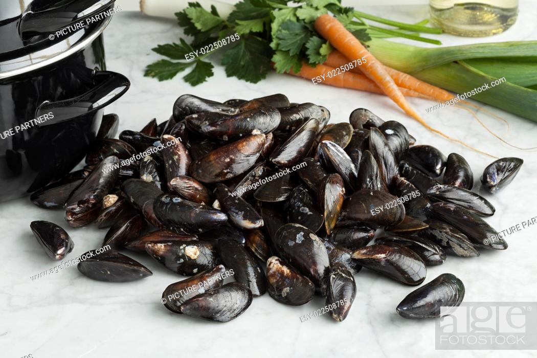 Photo de stock: Fresh uncooked common mussels in the shell.