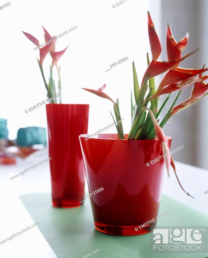 Stock Photo: Heliconias in red glass vases.