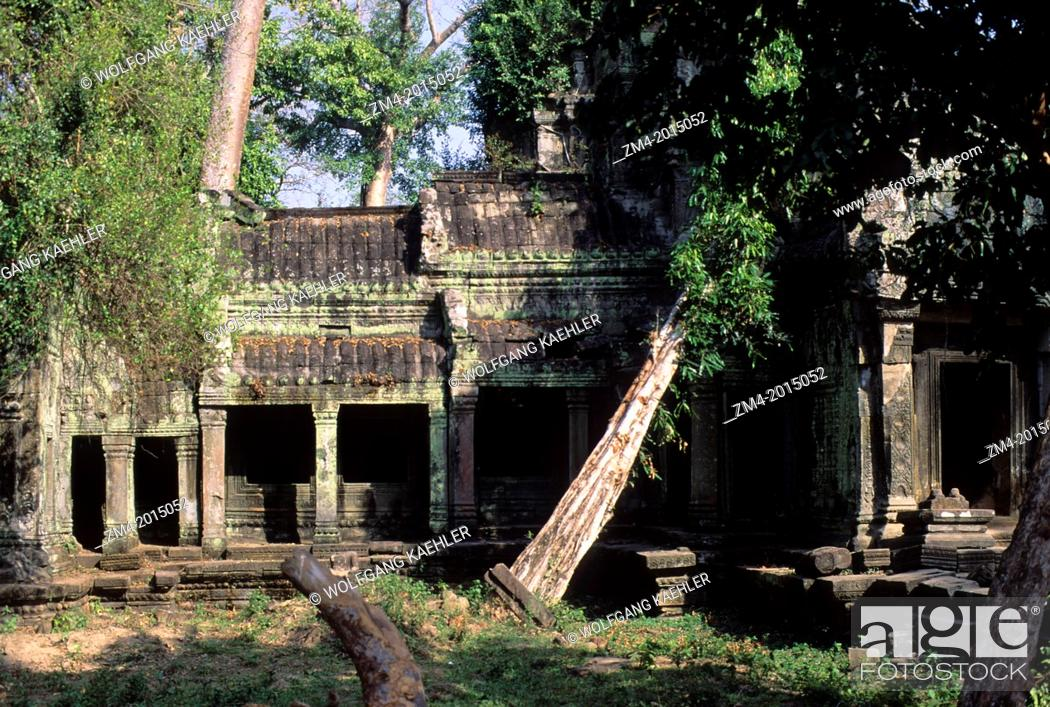 Stock Photo: CAMBODIA, ANGKOR, TA PROHM TEMPLE, OVERGROWN WITH VEGETATION.