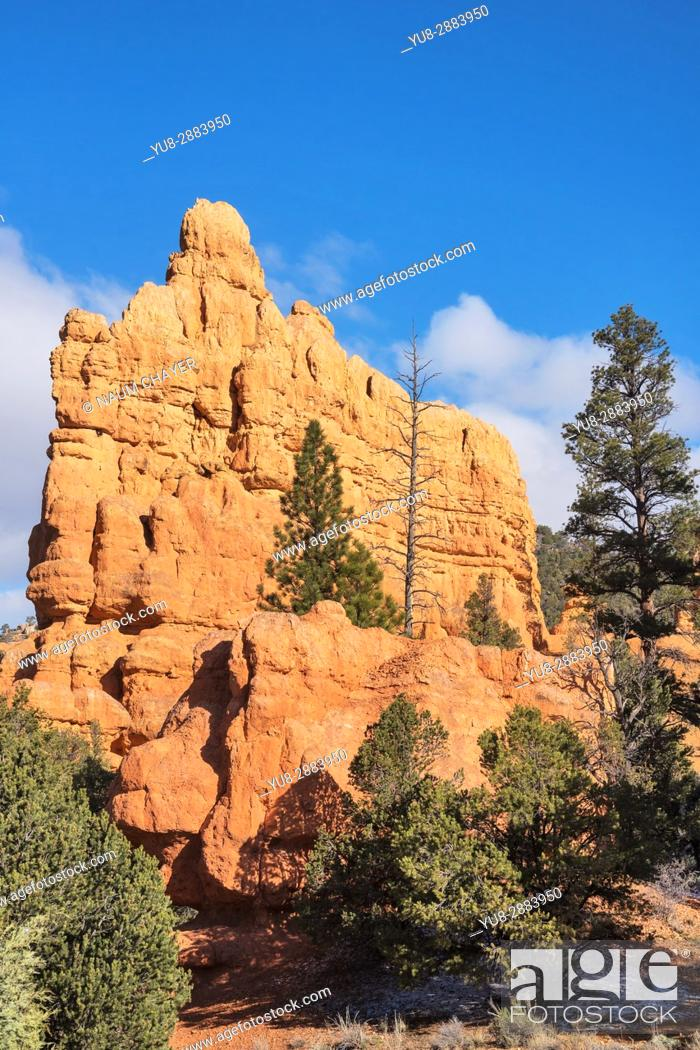 Stock Photo: Beautiful landscape with red sandstone formations, Red Canyon, Utah, USA.
