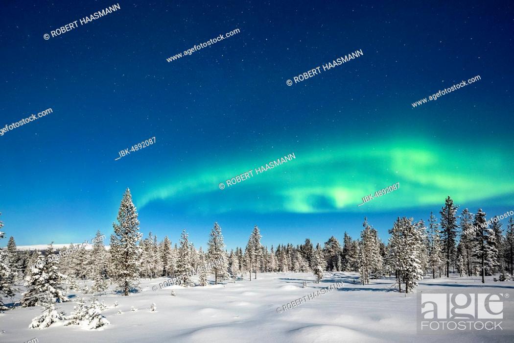Stock Photo: Northern Lights (Aurora Borealis) with starry sky over snow-covered trees, winter landscape, Pallastunturi, Pallas-Yllästunturi National Park, Muonio, Lapland.