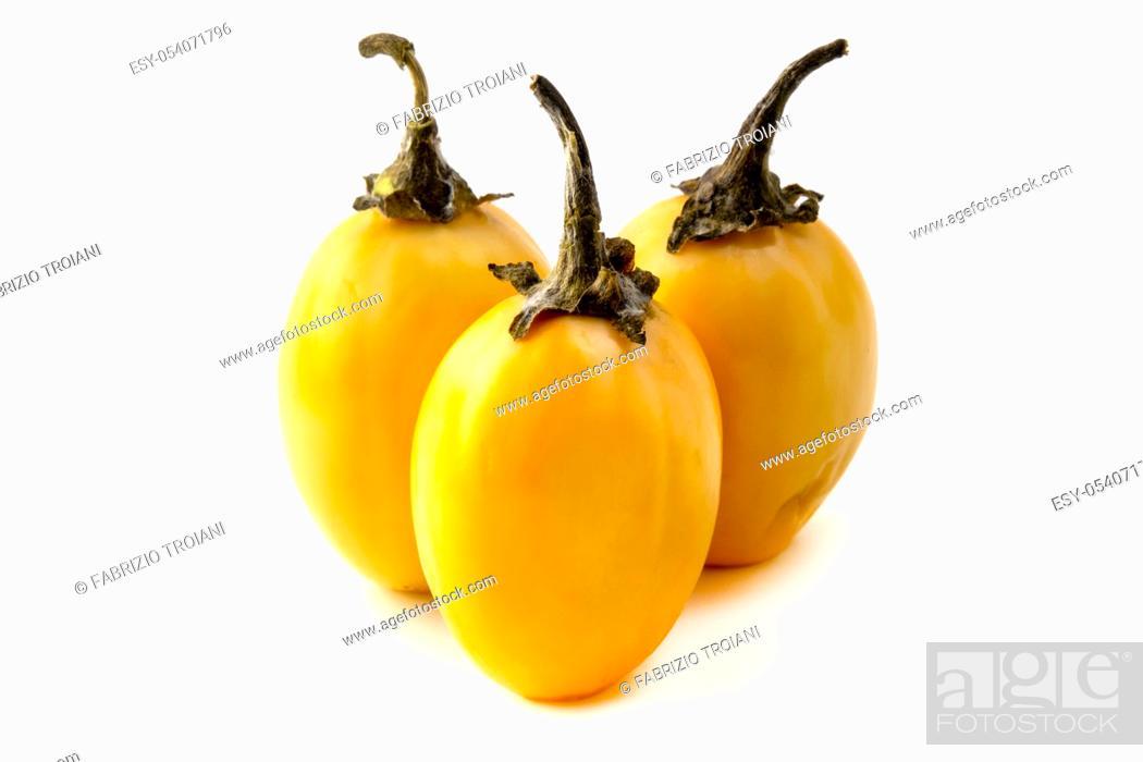 Stock Photo: African eggplant (Solanum macrocarpon) on a white background.