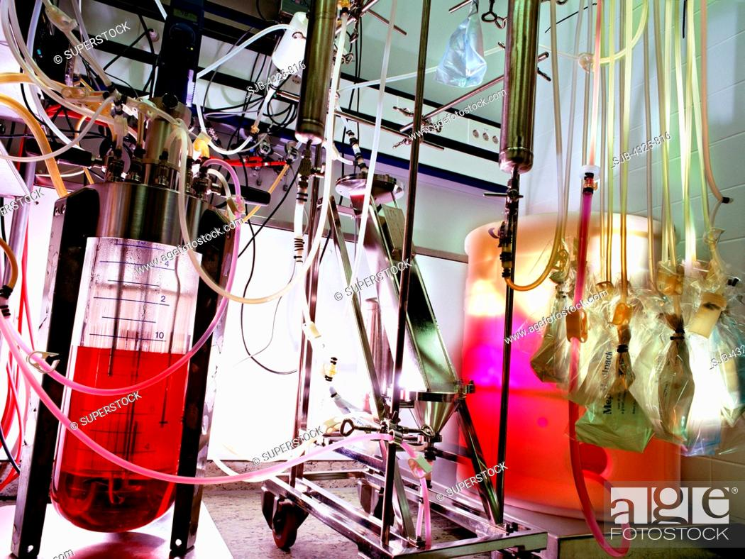 Stock Photo: Development of a continuous fermentation process for the production of proteins in pharmaceutical biotechnology. Prior to the transfer to full-scale production.