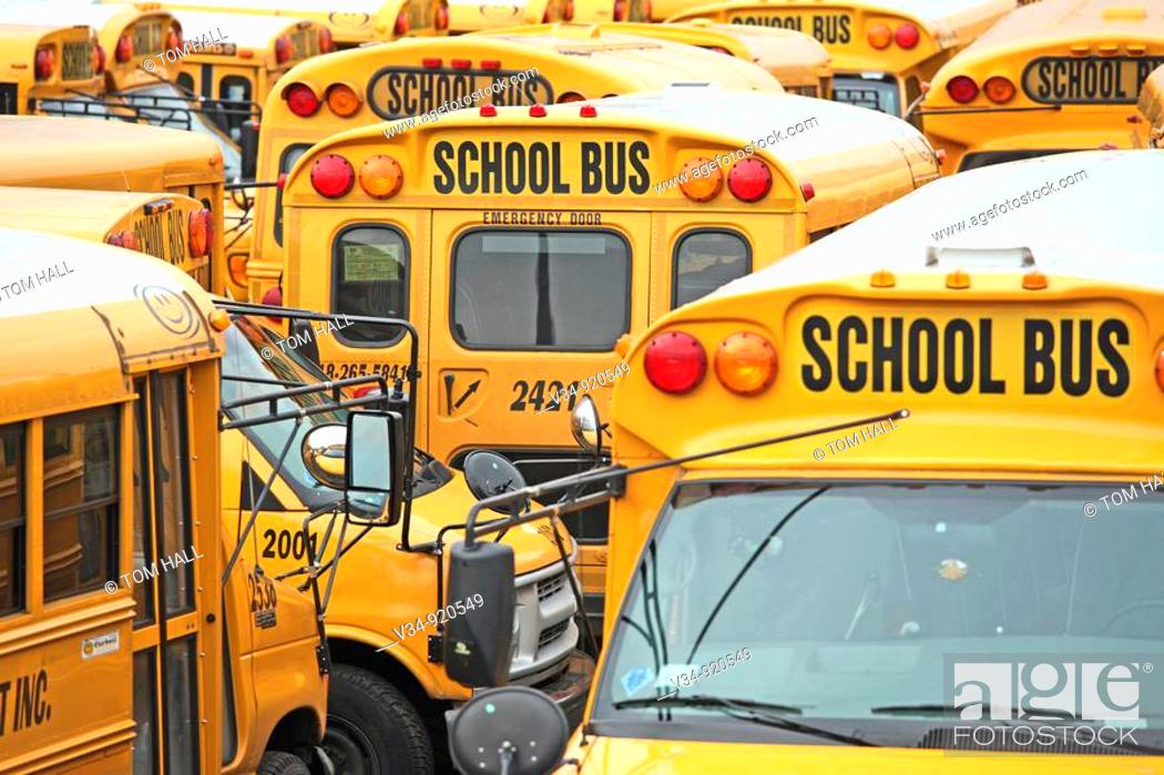 Stock Photo: A mosaic of American school buses. New York City.
