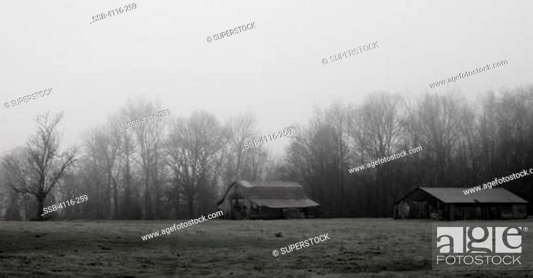 Stock Photo: Two abandoned barns in a field, Arkansas, USA.