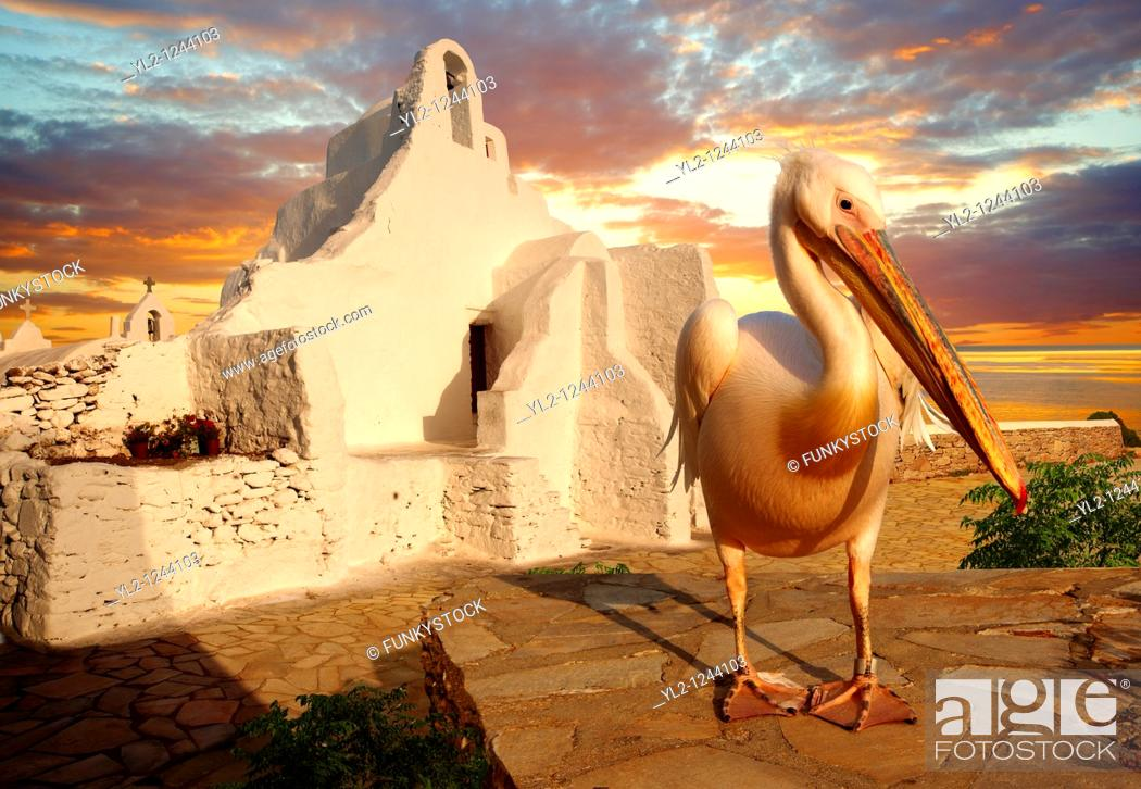 Stock Photo: Sunset over the Paraportiani Greek Orthodox churches of Mykanos Chora with the Pelican town mascot Petros, Cyclades Islands, Greece.