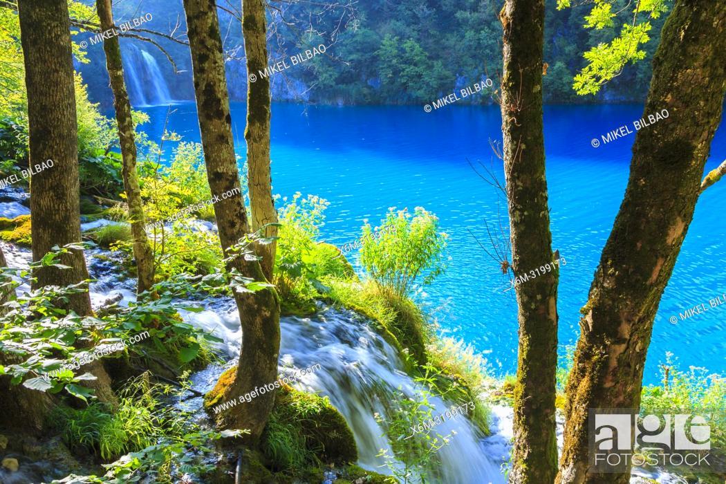 Imagen: Plitvice Lakes National Park. Croatia, Europe.