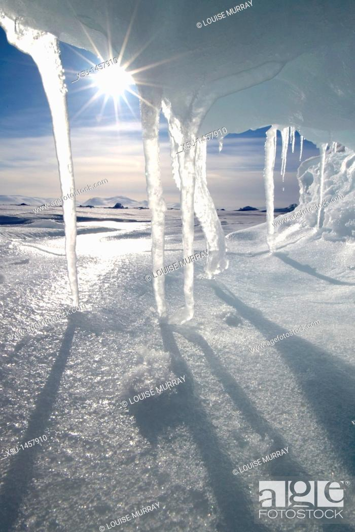 Stock Photo: Icicles melting in the Arctic midnight sun.