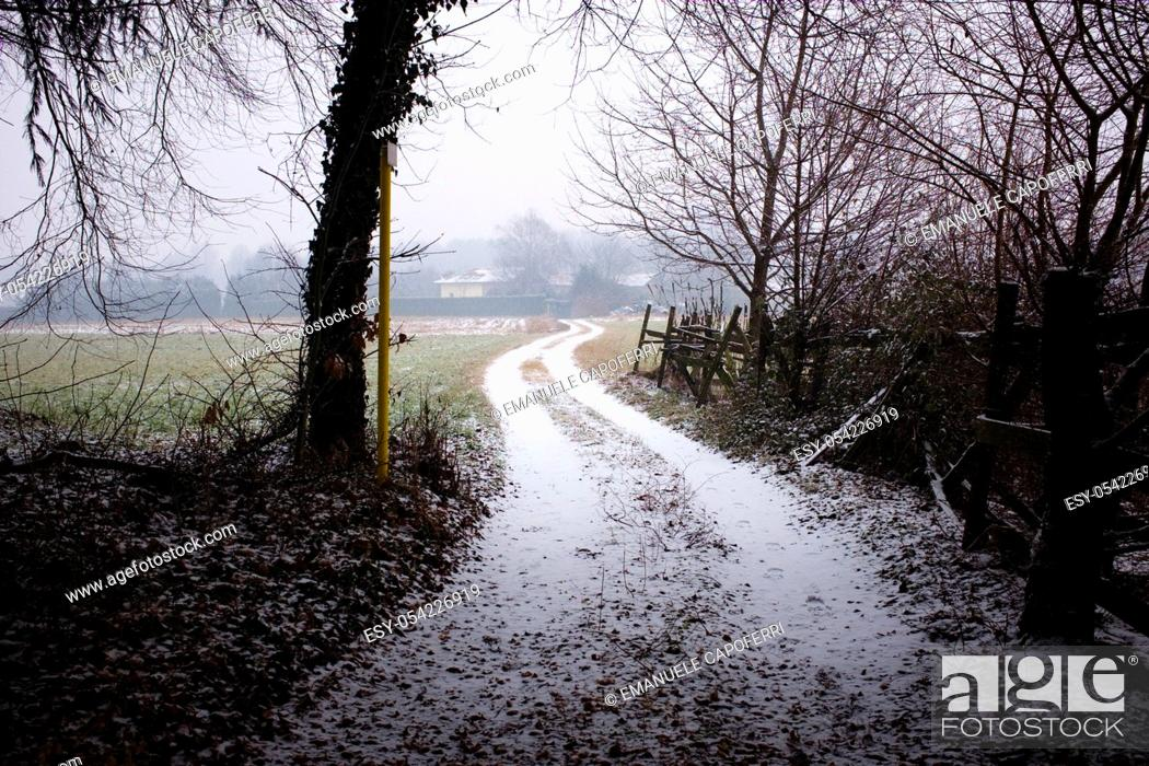 Stock Photo: path in the woods and the fields, snow.