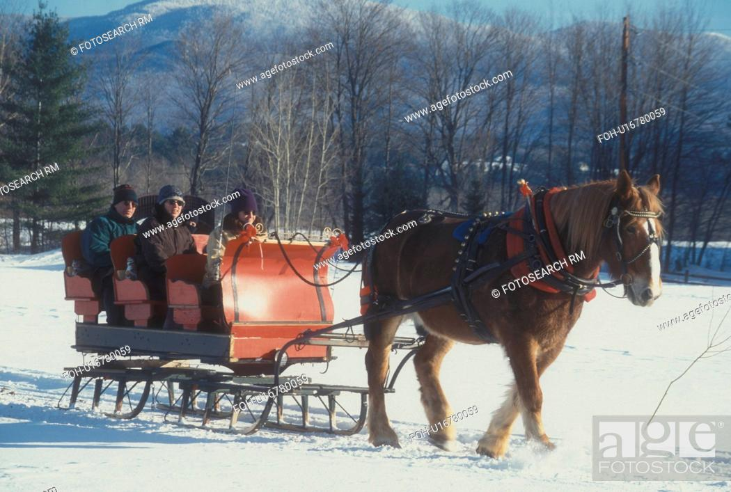 Sleigh Ride One Horse Open Sleigh Stowe Vermont Vt People