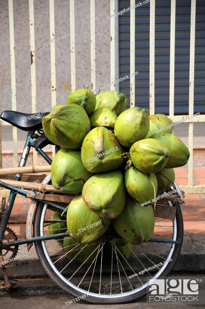 Stock Photo: Coconuts on a bike rack.