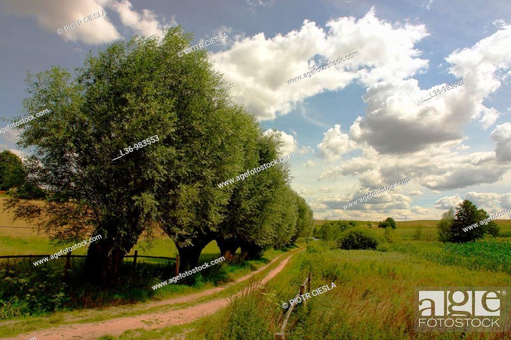 Stock Photo: Poland  Mazowsze region.