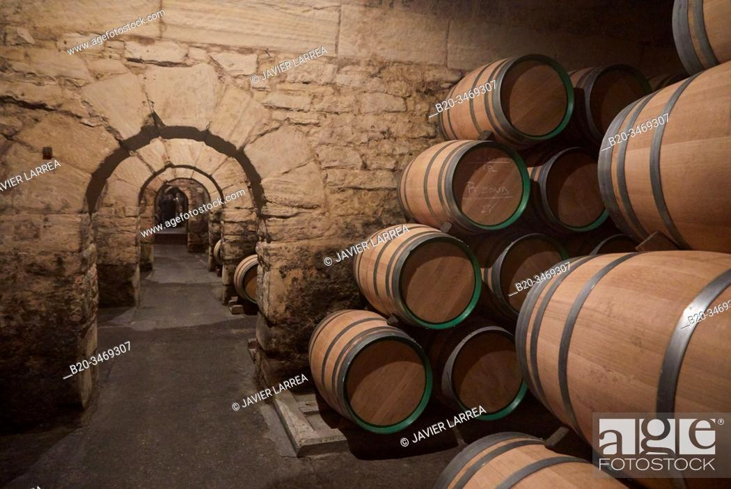 Stock Photo: Barrel cellar, Marques de Riscal winery, Elciego, Alava, Rioja Alavesa, Basque Country, Spain, Europe.