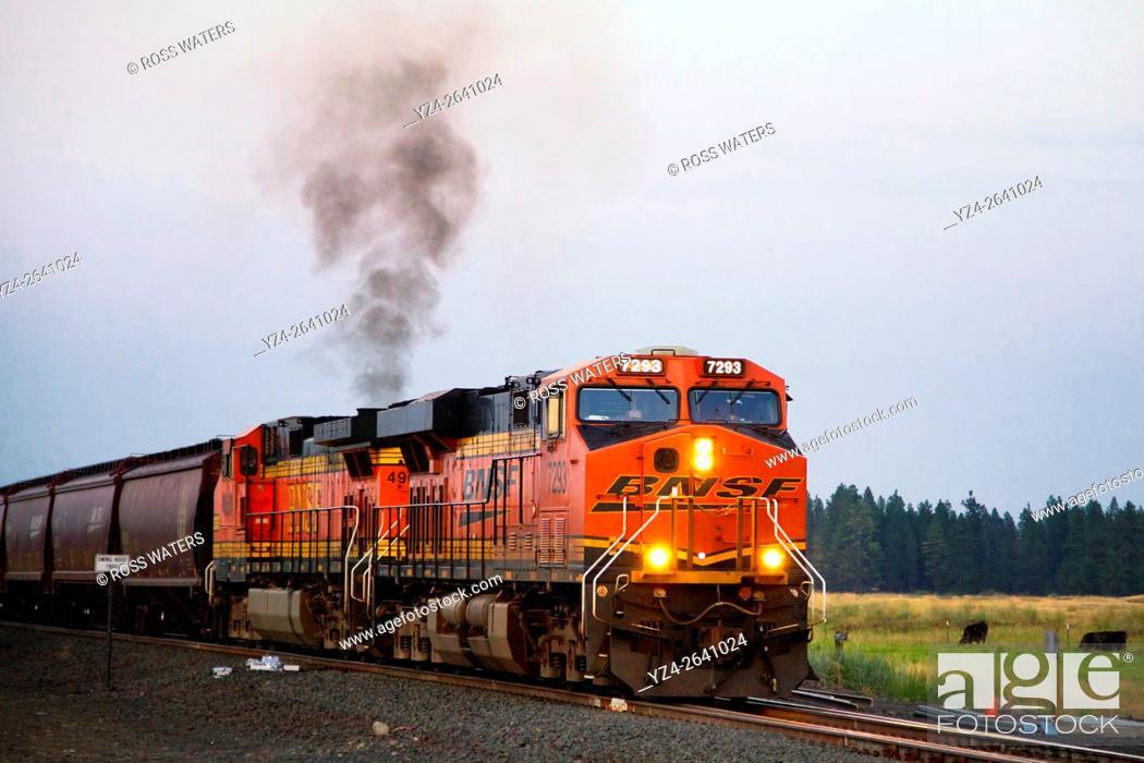 Imagen: BNSF train at East Babb siding, Cheney, Washington, USA.
