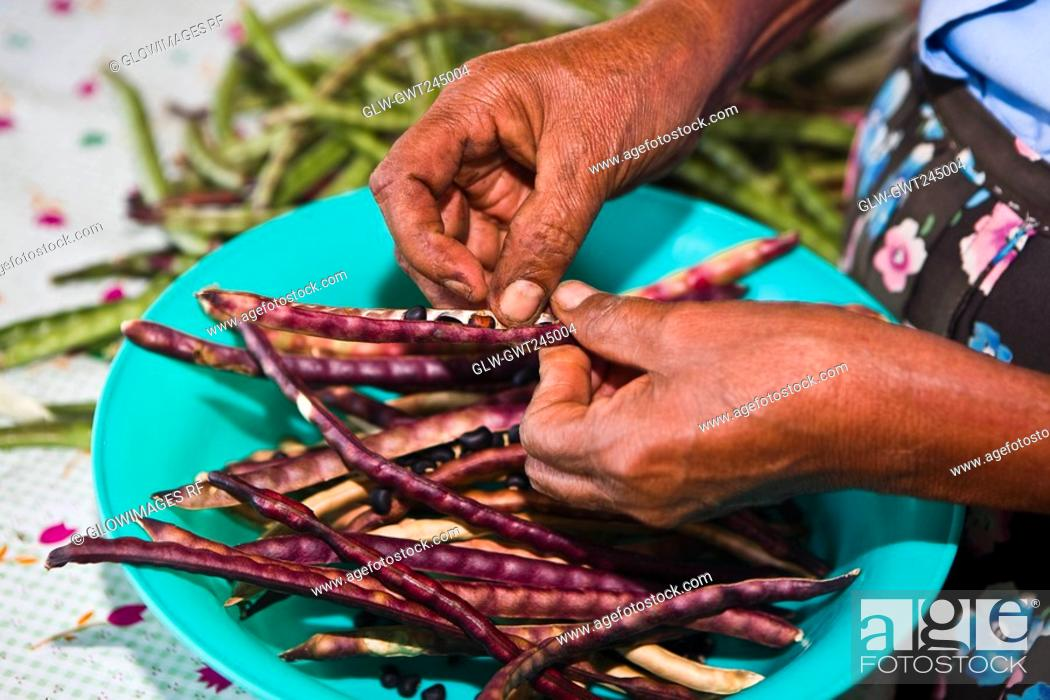 Stock Photo: Close-up of a woman's hand podding dried beans, Hidalgo, Papantla, Veracruz, Mexico.