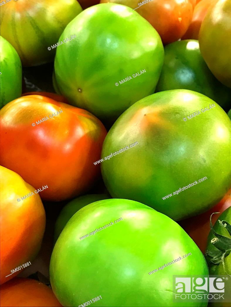 Stock Photo: Red tomato among green tomatoes.