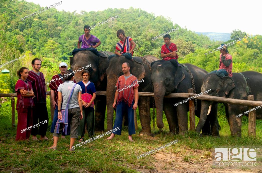 Thailand Elephants And Their Karen Mahouts Are A Common Sight Throughout The Valley Around The Stock Photo Picture And Rights Managed Image Pic Gbp Cpa0017849 Agefotostock